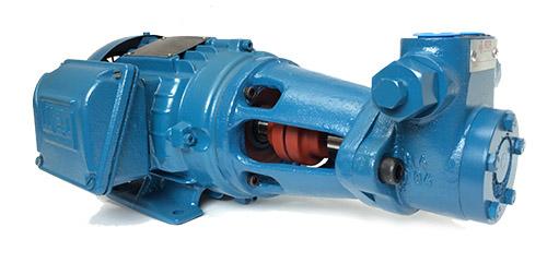 motobomba-rzr-250
